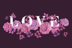 Plantilla decorativa de las rosas Imagenes de archivo