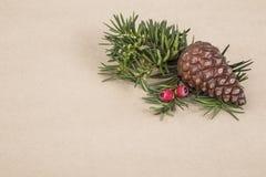 Plantilla del Año Nuevo/noel con el cono del pino Foto de archivo libre de regalías