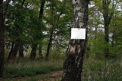 plantilla del aviso en el árbol Fotografía de archivo libre de regalías