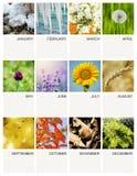 Plantilla del calendario Foto de archivo libre de regalías