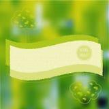 Plantilla del cartel de Eco Foto de archivo libre de regalías