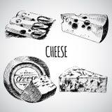 Plantilla del diseñador del dibujo de bosquejo del queso del vector Colección de la comida de la granja producto lácteo dibujado  Foto de archivo libre de regalías