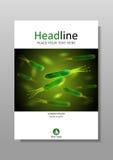 Plantilla del diseño de la cubierta de las bacterias de los píloros de Helicobacter en A4 Fotografía de archivo libre de regalías
