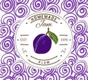 Plantilla del diseño de la etiqueta del atasco para el producto del postre del ciruelo con la mano dibujada bosquejó la fruta y e Imágenes de archivo libres de regalías
