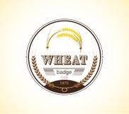 Plantilla del diseño de la insignia del oído del trigo del vintage Ilustración del vector Imagen de archivo libre de regalías