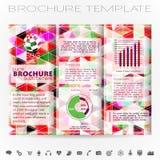 Plantilla del diseño del folleto Fotografía de archivo libre de regalías