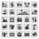 Plantilla del diseño del logotipo del vector de la granja Jardinería Foto de archivo libre de regalías