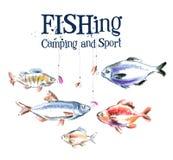 Plantilla del diseño del logotipo del vector de los pescados pesca o stock de ilustración