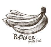 Plantilla del diseño del logotipo del vector de los plátanos fruta o comida Fotografía de archivo libre de regalías