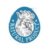 Plantilla del diseño del logotipo del vector del pollo Fotografía de archivo