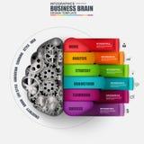 Plantilla del diseño del vector del cerebro de Infographic Imágenes de archivo libres de regalías