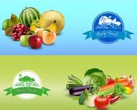 Plantilla del diseño de las frutas y verduras Fotos de archivo libres de regalías