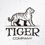 Plantilla del emblema del logotipo del tigre Símbolo de la mascota de la marca para el negocio o la camisa Elemento del diseño de Imágenes de archivo libres de regalías