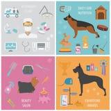 Plantilla del gráfico de la información del perro stock de ilustración