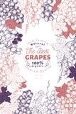 Plantilla del marco de la baya de la uva Ejemplo dibujado mano de la fruta del vector Fondo botánico grabado del vintage del esti libre illustration