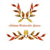Plantilla del modelo de la hoja de la acuarela del otoño del vector Fotografía de archivo