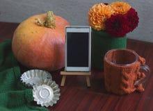 Plantilla del otoño con la calabaza, dalias Fotos de archivo libres de regalías