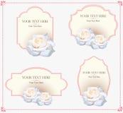 Plantilla del vector de la tarjeta de felicitación del ornamento del vintage Invitación de lujo retra, certificado real Marco de  Imágenes de archivo libres de regalías