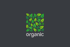 Plantilla del vector del diseño de la forma del cuadrado del logotipo de Eco de las hojas Icono natural orgánico del concepto del Fotografía de archivo