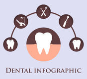 Plantilla dental para infographic libre illustration