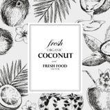 Plantilla dibujada mano del diseño del coco Ejemplo tropical de la comida del bosquejo del vector retro del estilo Fotografía de archivo libre de regalías