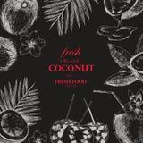 Plantilla dibujada mano del diseño del coco Ejemplo tropical de la comida del bosquejo del vector retro del estilo Imagen de archivo libre de regalías
