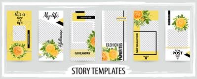 Plantilla editable de moda para las historias sociales de las redes, enfermedad del vector libre illustration