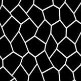Plantilla irregular blanco y negro del mosaico Imagenes de archivo