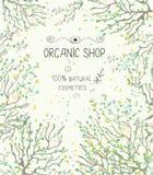 Plantilla orgánica de la tienda para los productos naturales Imagen de archivo libre de regalías