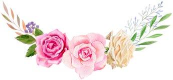 Plantilla pintada a mano del clipart de la maqueta de la acuarela de rosas Imagen de archivo