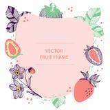 Plantilla plana exhausta de la mano del marco de texto de la fresa de la fruta Diseño del vector con el ejemplo botánico de la fr stock de ilustración