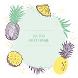 Plantilla plana exhausta de la mano del marco de texto de la piña de la fruta Diseño del vector con el ejemplo botánico de la piñ stock de ilustración
