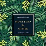 Plantilla tropical de Forest Leaves Abstract Vector Banner o de la invitación La hoja de palma de Monstera, el helecho y el otro  libre illustration