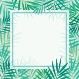 Plantilla tropical del fondo de las hojas de palma Fotos de archivo libres de regalías
