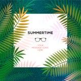 Plantilla tropical del verano con las hojas de palma Fotos de archivo