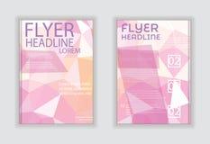 Plantillas abstractas/efectos de escritorio de /design del informe anual con pizca Imagen de archivo libre de regalías