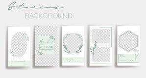 Plantillas verdes del marco de las historias del instagram Fondo del vector Maqueta para la bandera social de los medios libre illustration