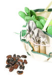 Planting bag with garden tools and runner beans Stock Photos