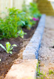 Planting bed border edging Stock Photography