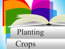 Planting Crops Indicates Agrarian Cultivation And Field. Planting Crops Meaning Agribusiness Agriculture And Farming Stock Photography