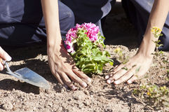 Planting a flower garden. Children plant a flower garden as a community activity Stock Image