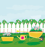 Planting flowers in the garden Stock Images