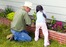 Planting flowers with Grandpa. A young child is helping her Grandfather in the garden Stock Photography