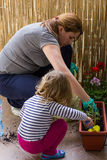 Planting Flowers Stock Photography