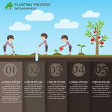 Planting infographics Stock Images
