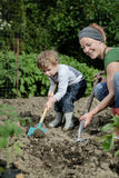 Planting. Mother and son planting in the garden patch stock photography