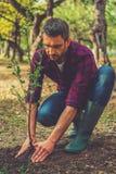 Planting new life. stock photos