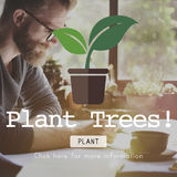 Planting Plant Plant Trees Green World Concept Stock Photos