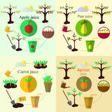 Planting process set and juice flat vector, set Stock Images