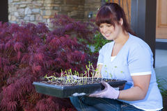 Planting season. A young woman displays a tray of seedlings for her vegetable garden Royalty Free Stock Images